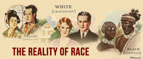 The Reality of Race by Ehud Would